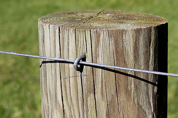 Anchor Rural Fencing Amp Staples Anchor Wire